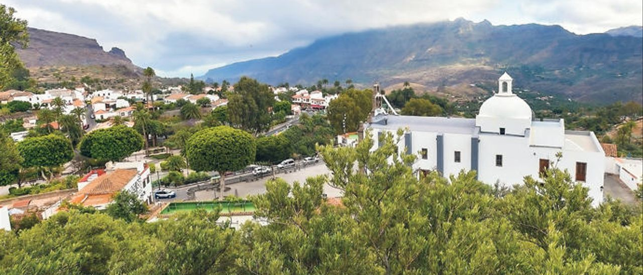 Vista del centro histórico de Santa Lucía desde la zona de El Valle con varias copas de olivo en primer plano.