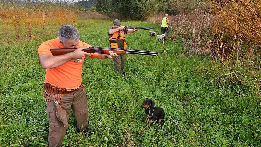 """Medio Rural promete que """"flexibilizará"""" las condiciones para gestionar cotos de caza"""