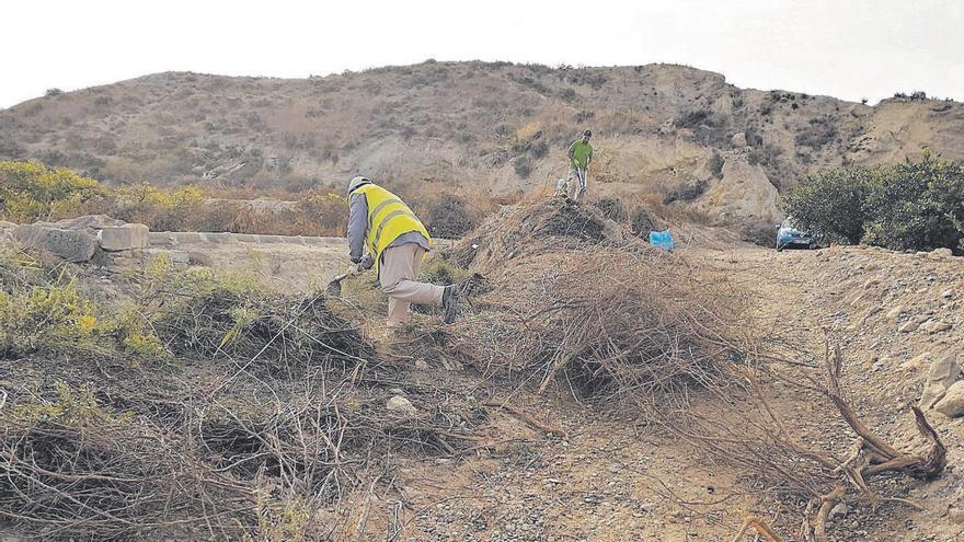 Trabajos de desbroce la semana pasada en el yacimiento de Los Saladares.