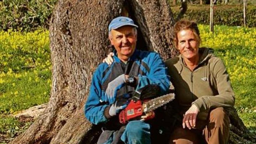 Ein kräftiger Schnitt für den Johannisbrotbaum