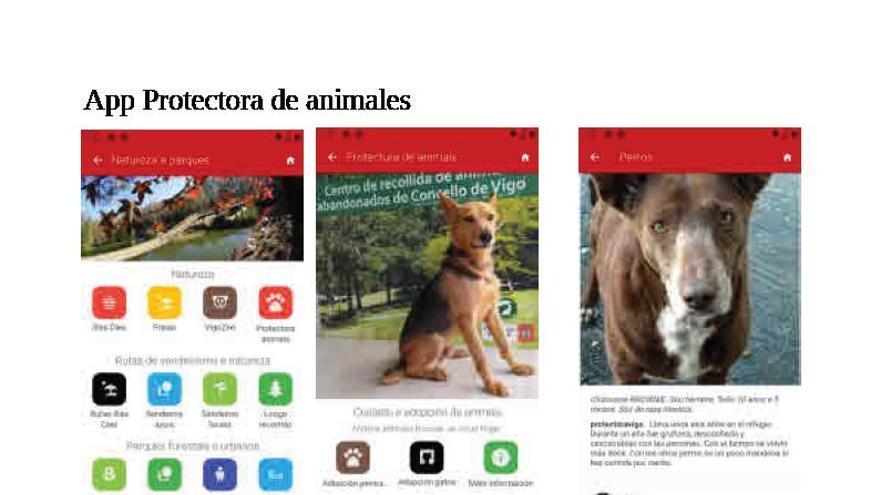 Así funciona la app para adoptar animales en Vigo
