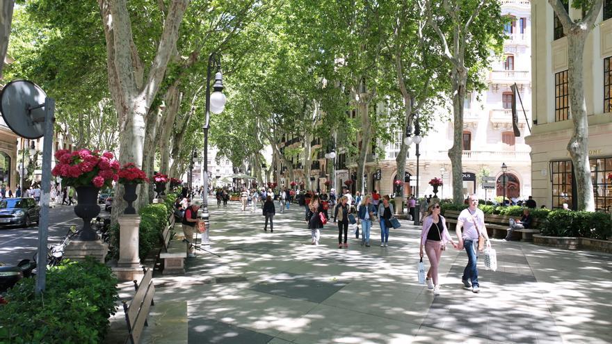 Palma: una ciudad llena de contrastes