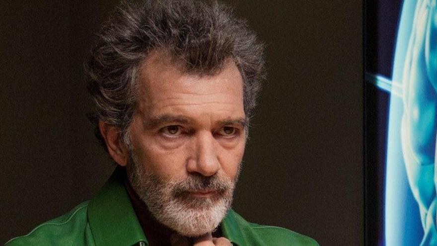 «Dolor y Gloria», preseleccionada als Òscar com a Millor pel·lícula internacional