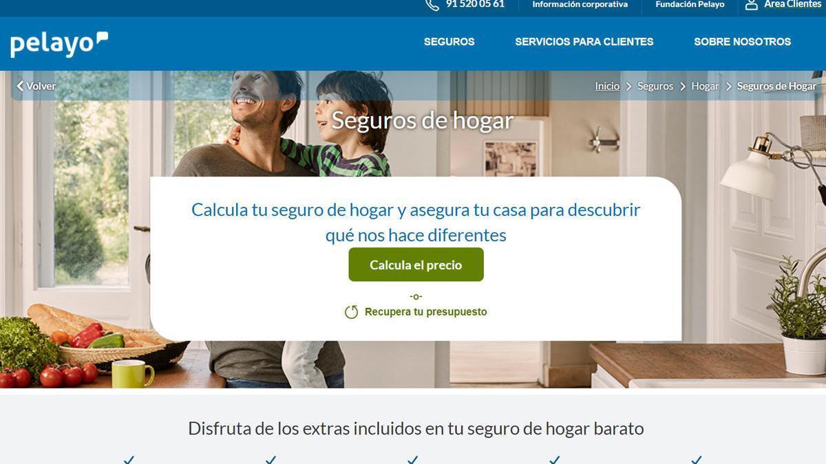 Una página de la web actual de la aseguradora Pelayo.