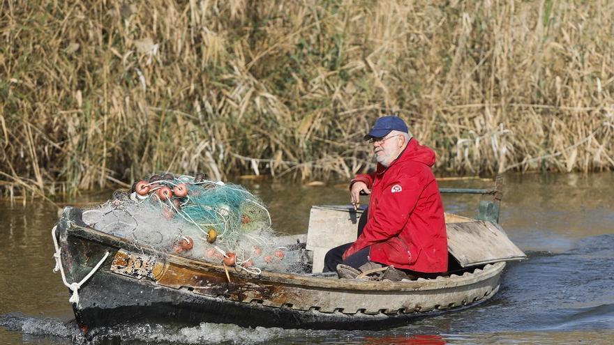 Barcas eléctricas, la medida estrella para reducir la contaminación en l'Albufera