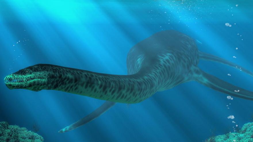 Hallan pruebas de que hubo dinosaurios acuáticos