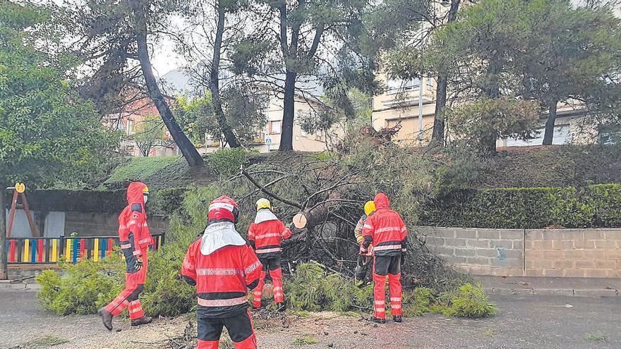 La pluja tomba arbres i deixa més de 100 litres per metre quadrat a Berga