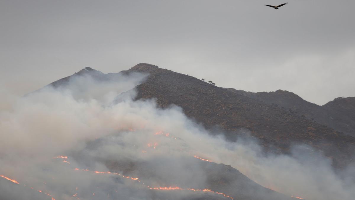 El incendio, visto desde un mirador de Casares.