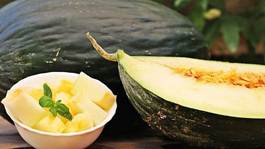 Cuatro catas de melón de Torres de Berrellén
