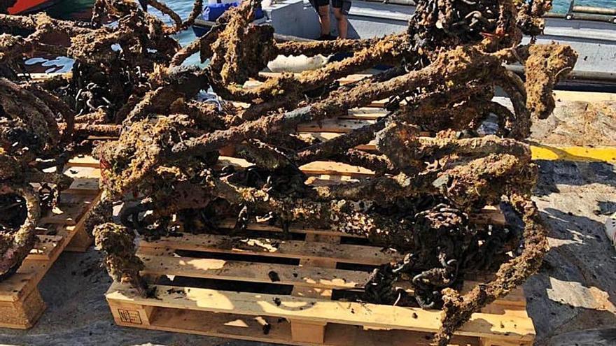 Cadaqués retira àncores i cadenes del mar per protegir la posidònia