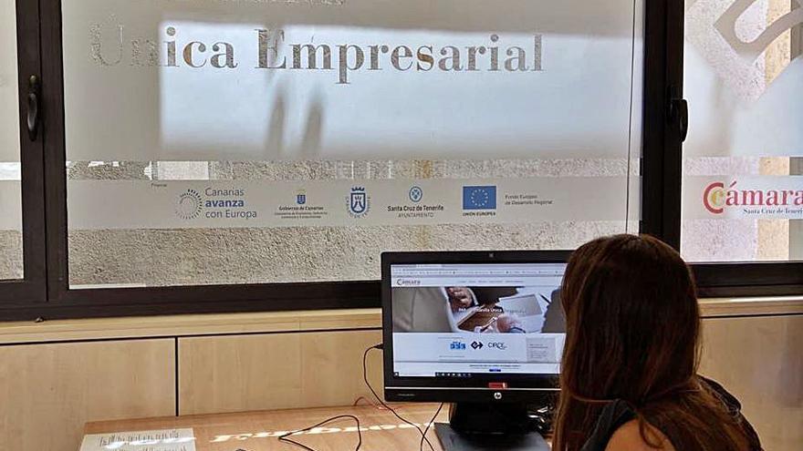 El servicio PAE-VUE de Santa Cruz de Tenerife pone en marcha casi 600 empresas en lo que va de año