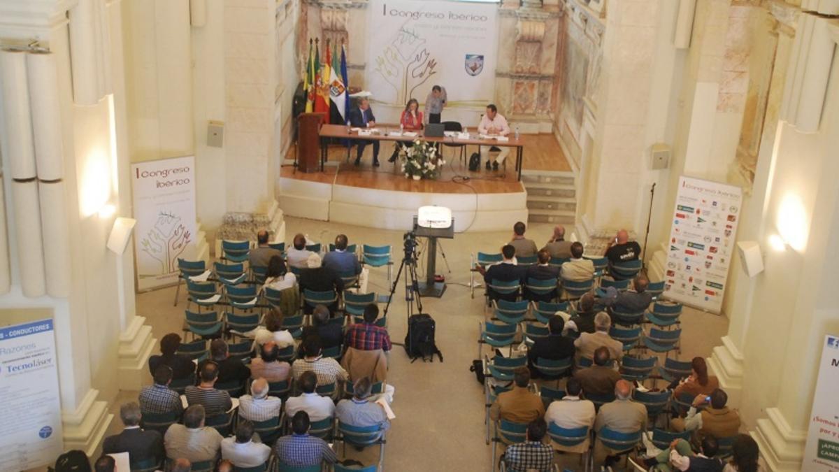 Primera edición del evento celebrada en Olivenza.