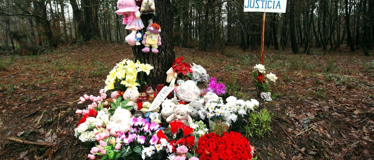 El asesinato de Asunta Basterra: cronología gráfica de un crimen que conmocionó a España