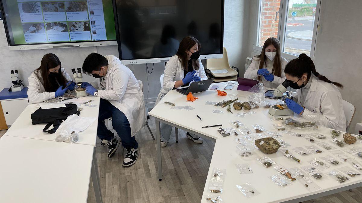 Alumnos de Los Sauces que han llevado a cabo el estudio durante un momento de trabajo