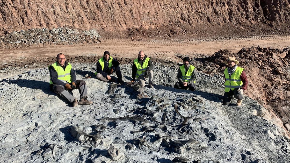 Hallan nuevos restos de dinosaurio ornitópodo en las minas de arcilla de Morella (Castellón)