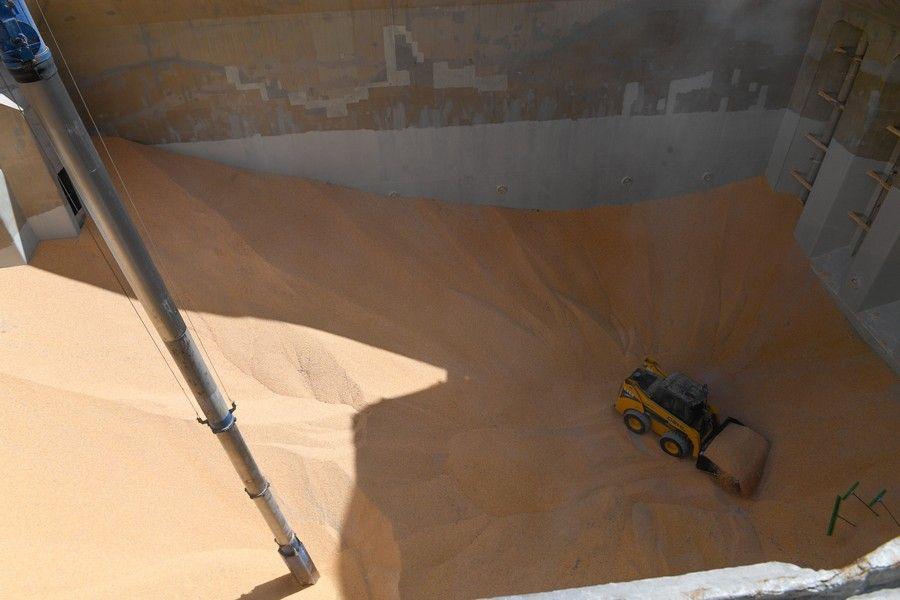 El buque Redhead trae 13.200 toneladas de millo de Rumanía