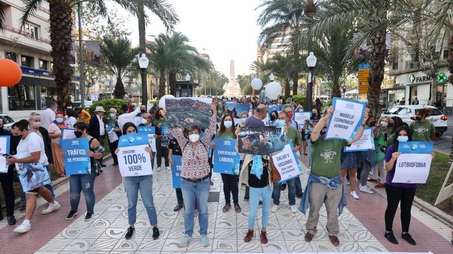 Así ha sido la protesta por el fin de la pobreza en Alicante