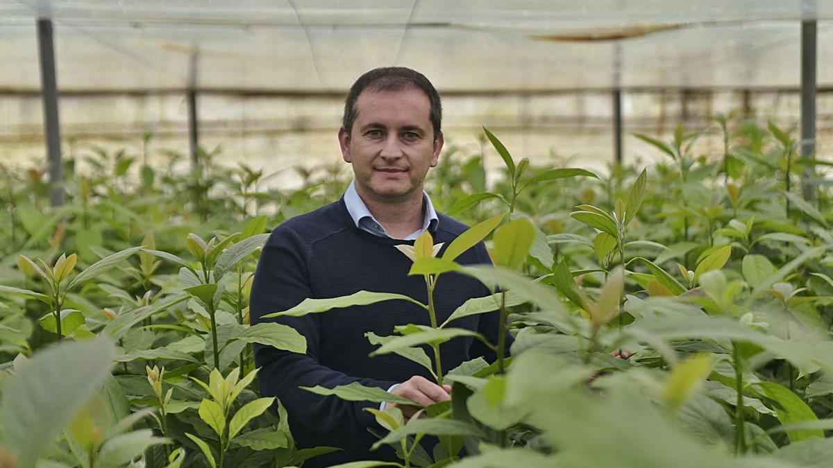 Juan Luis Jiménez, CEO de Caliplant Agro. | URQUÍZAR