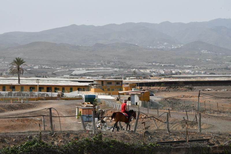 14/02/2020 TELDE.  Vistas del municipio desde Lomo Los Frailes con calima.  HIPODROMO LOMO LOS FRAILES Y MEDIANIAS. Fotógrafa: YAIZA SOCORRO.  | 14/02/2020 | Fotógrafo: Yaiza Socorro