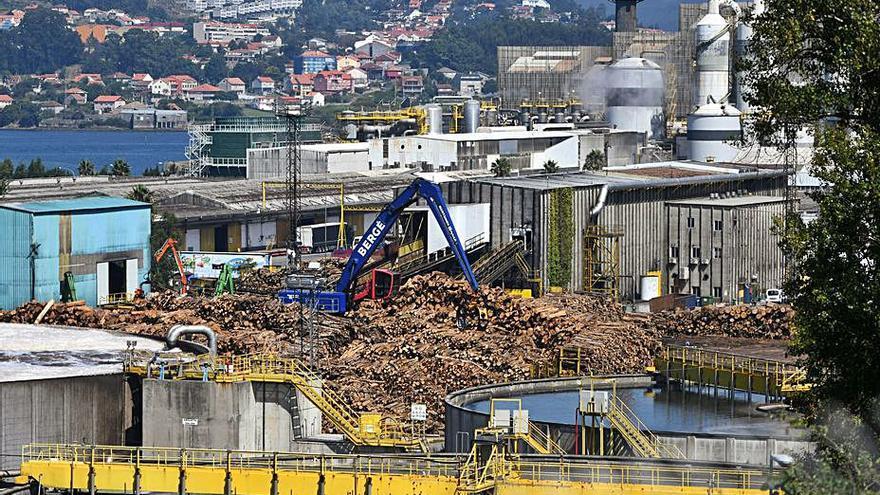Ence refuerza el análisis de los terrenos ante el desmantelamiento de Elnosa