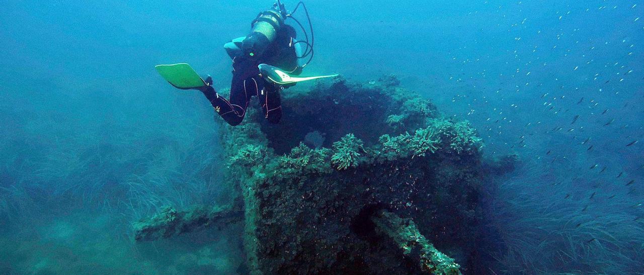 Un submarinista en uno de los módulos del arrecife artificial instalado hace 30 años en la zona norte de El Campello. | INFORMACIÓN