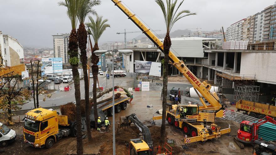 Retiran los árboles y las palmeras de la Praza da Estación en Vigo