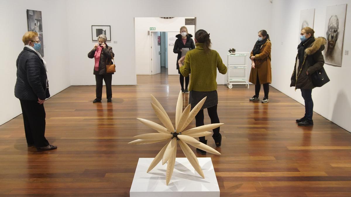 Una de las visitas guiadas celebradas en el Museo de Zamora sobre esta exposición
