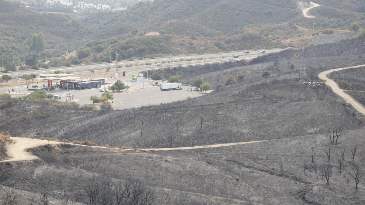 Un incendio en Sierra Bermeja provoca el desalojo de un millar personas en Estepona, Jubrique y Genalguacil