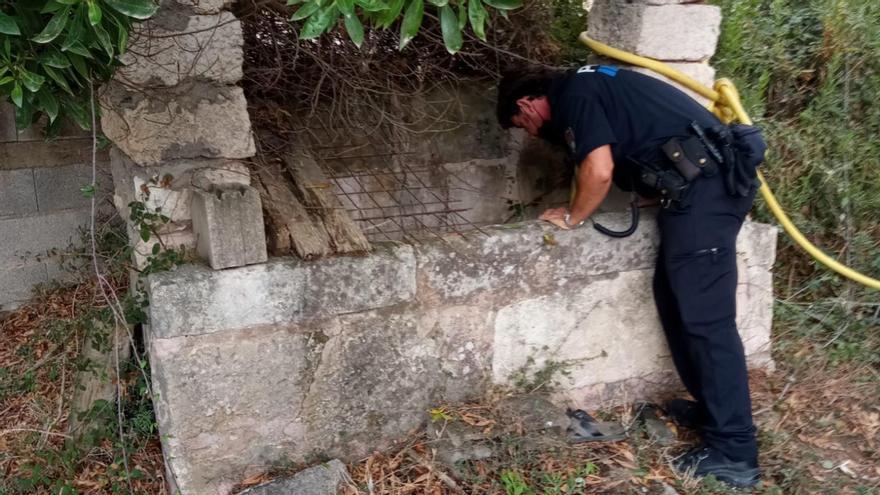 Un hombre cae a un pozo cuando intentaba rescatar a su perro en Santa Margalida