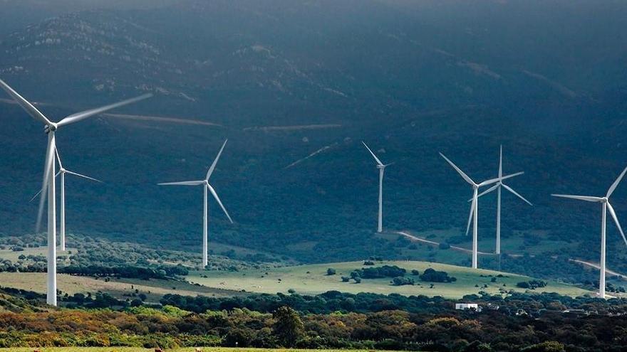 Endesa, Iberdrola, Naturgy, Capital Energy y EDP, adjudicatarias del concurso de renovables