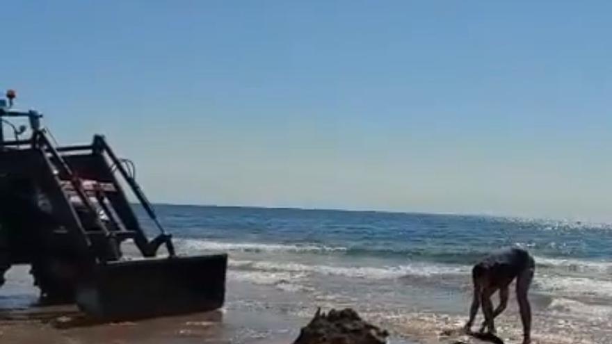 VÍDEO | Un pez raya sorprende a los bañistas en la playa del Grau de Castelló
