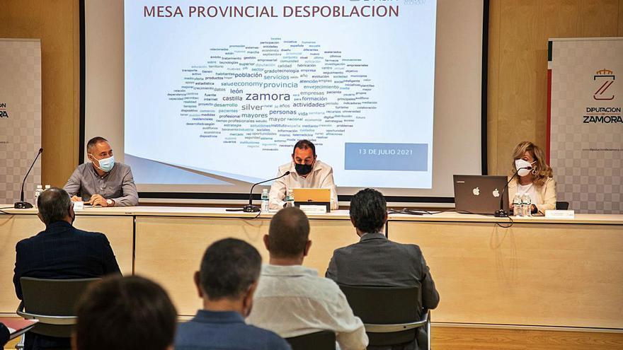 Requejo busca que la despoblación en Zamora sirva para bonificar hasta un 20% a empresas