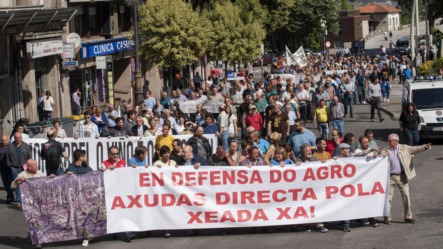 Medio millar de viticultores protestan en Ourense por la falta de ayudas