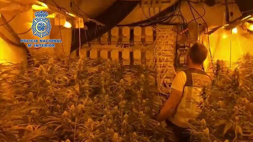 Golpe policial al tráfico de marihuana desde Europa del Este