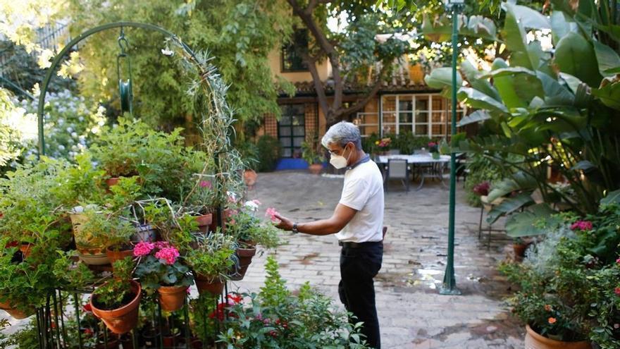 ¿Cuáles son los 50 patios seleccionados para el concurso de este año?