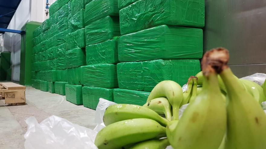 Interceptado un alijo de 663 kilos de cocaína en el Puerto de Marín