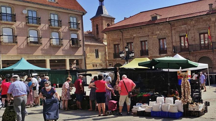 Así se desarrolla el mercado de la fruta y el textil en Benavente
