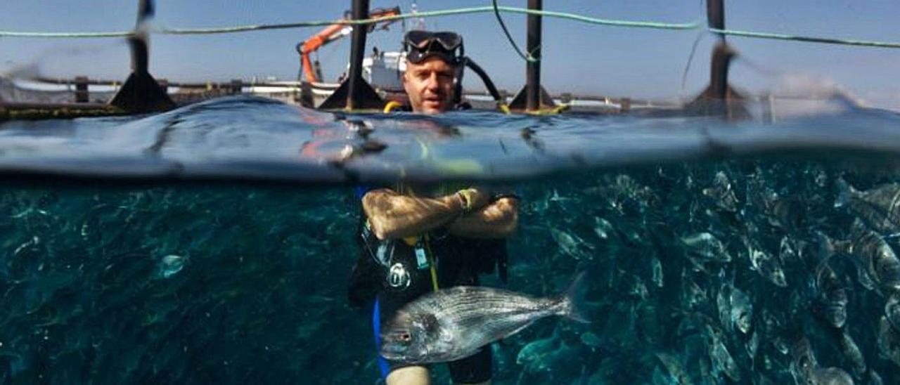 Eloy Meseguer, en una de las jaulas marinas.  