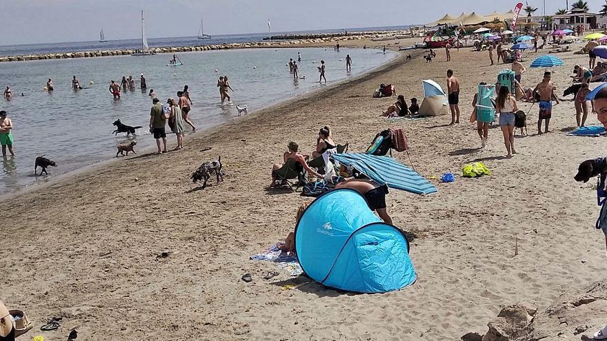 La playa para perros de Dénia se expande
