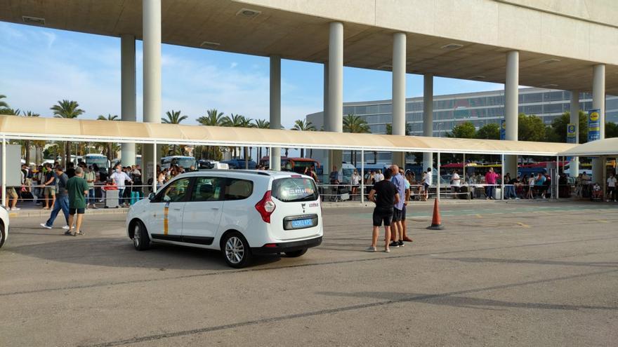 Los taxistas se plantan ante la presencia de taxis pirata en Son Sant Joan