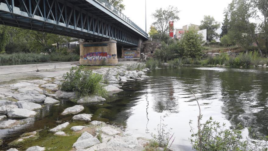 Acord a Girona per protegir l'ecosistema dels rius de la ciutat