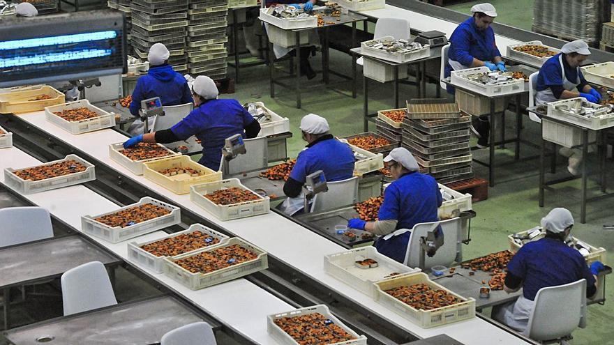 Acuicultura e I+D en la industria del mar, claves para el nuevo fondo comunitario