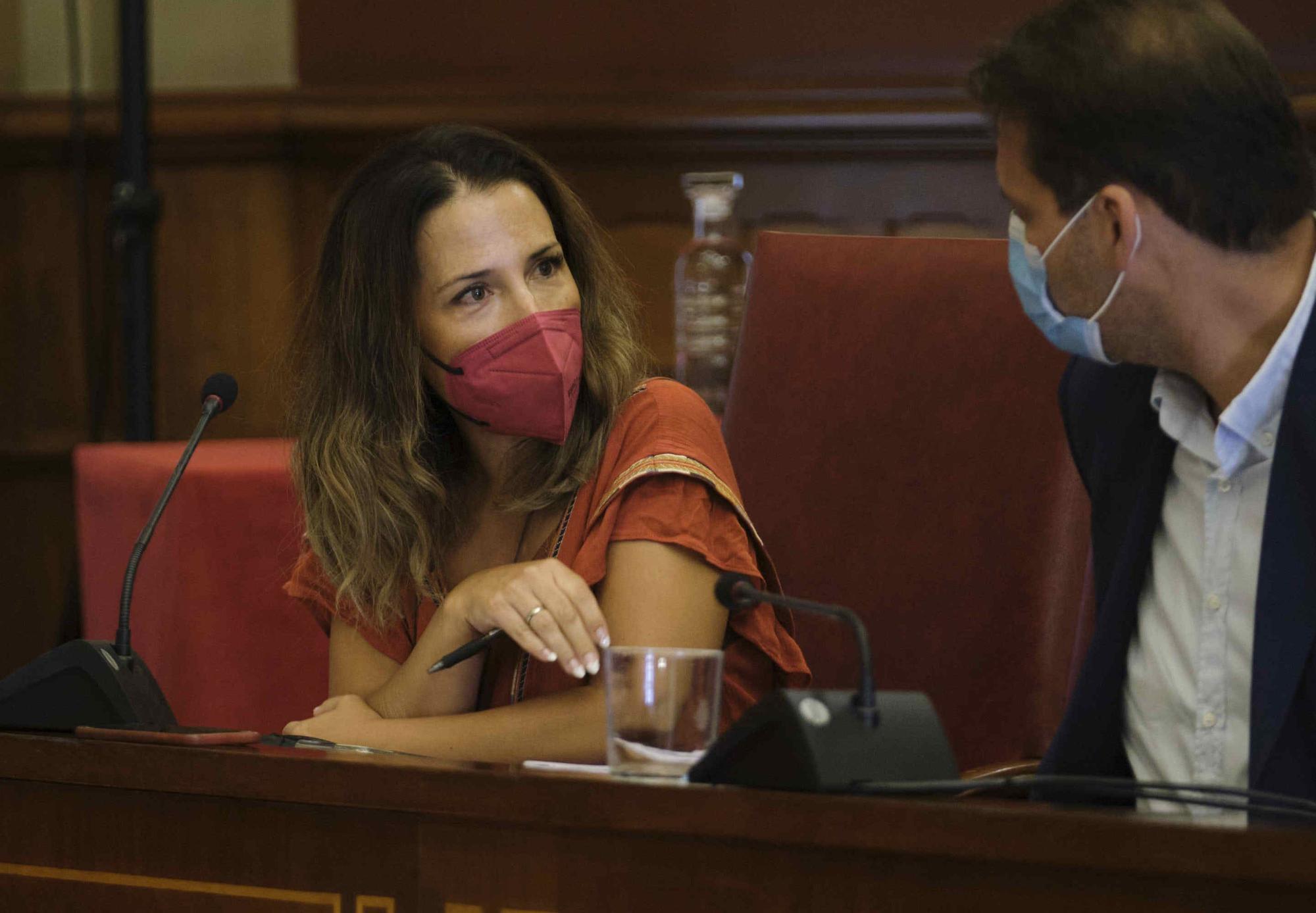 Comisión de Control del Ayuntamiento de Santa Cruz
