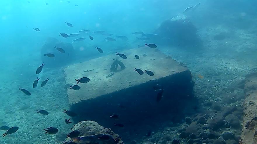 Una cámara submarina emitirá durante 8 meses los fondos del Puerto de Cartagena