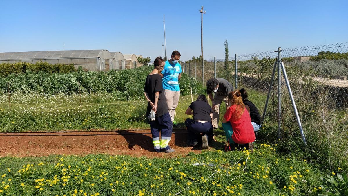 El contacte de l'alumnat amb l'entorn natural és essencial des del primer moment per tal de completar la formació.