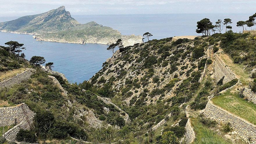 Wandern auf Mallorca: Von Sant Elm zum alten Trappistenkloster La Trapa