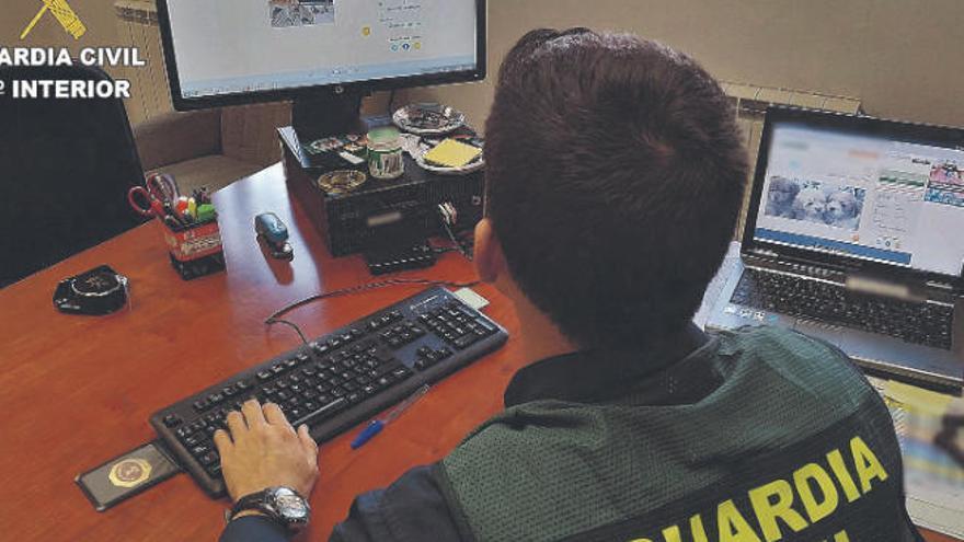 Investigada una persona en Tenerife y otra en Madrid por una estafa 'online'