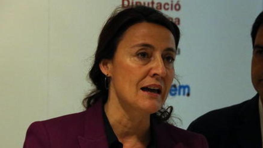 Conesa diu que els expedients investigats per la Udef estan «molt lluny» dels 2 milions d'euros