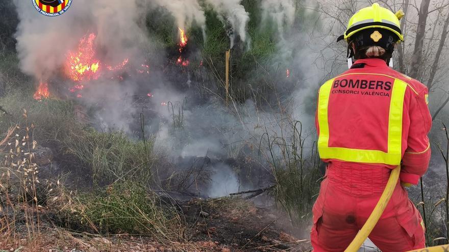 Unos 850 bomberos participan en la campaña contra incendios forestales