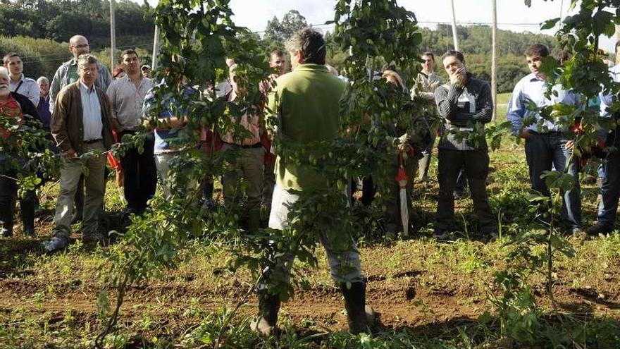 Mariñas-Betanzos subvenciona 6 proyectos de emprendedores y prevé crear 14 empleos